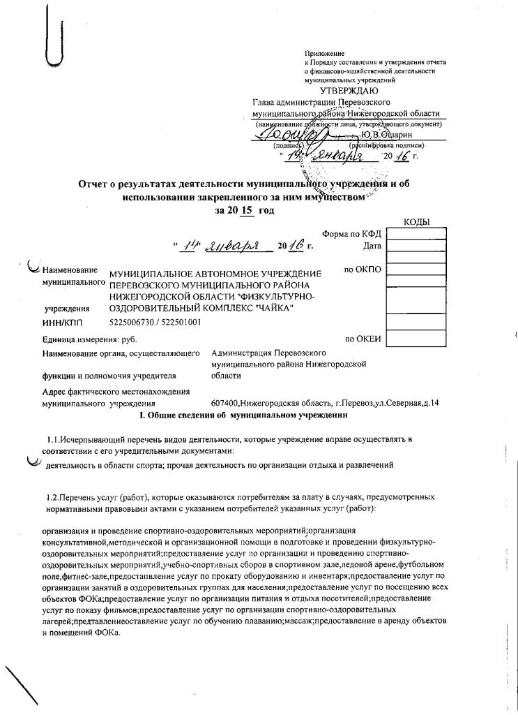 отчет 2015 001